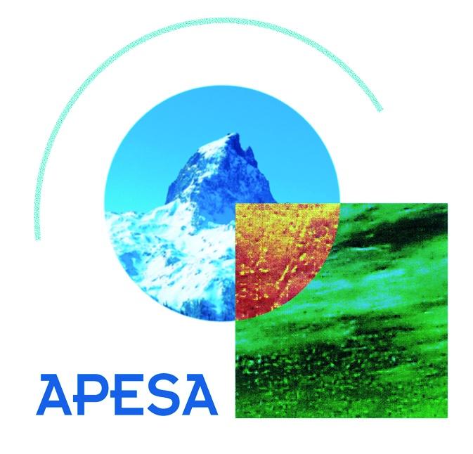 APESA 2012